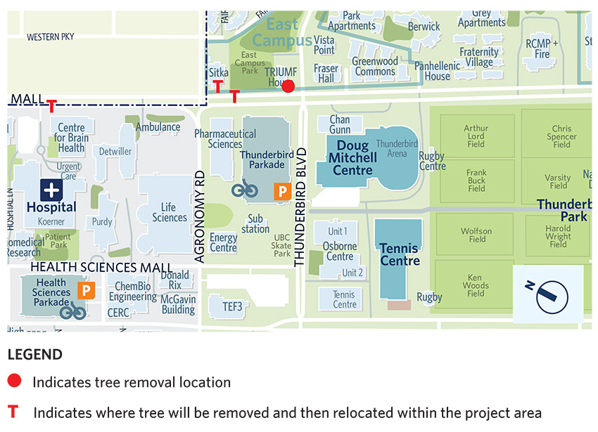 Map showing the locations of tree removals on Wesbrook Mall