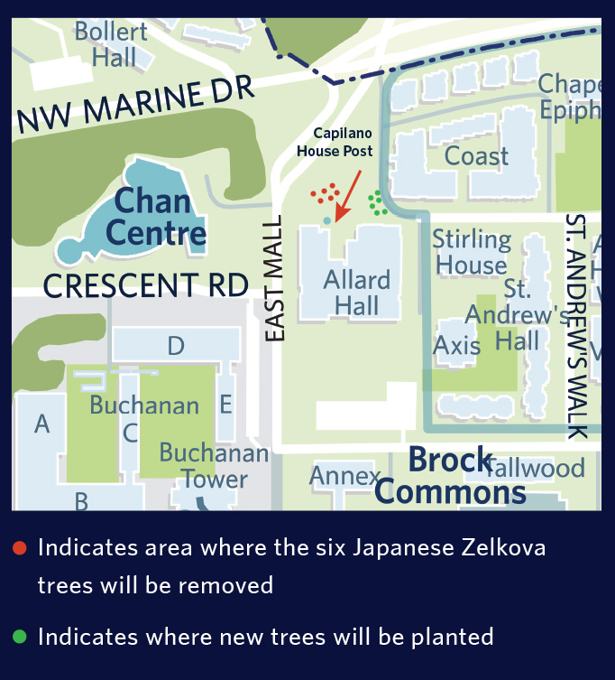 Tree removal map for Allard Hall