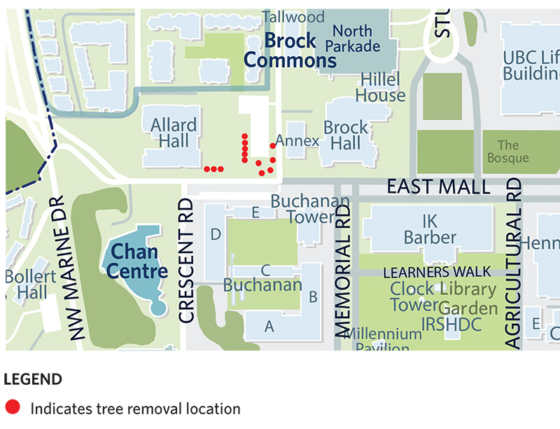 A map showing the location of tree removals for the Arts Student Centre
